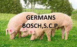 Germans Bosch